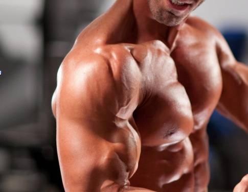 Aumentar mi perimetro muscular y conseguir un mayor volumen