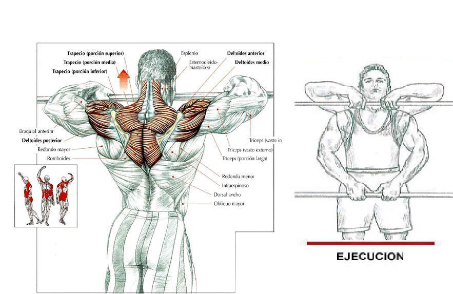 Remo al cuello | BuenaForma Entrenador Personal Villagarcía
