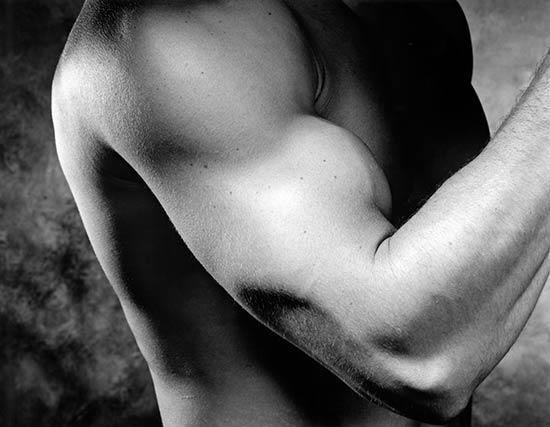 BW_MuscleArm