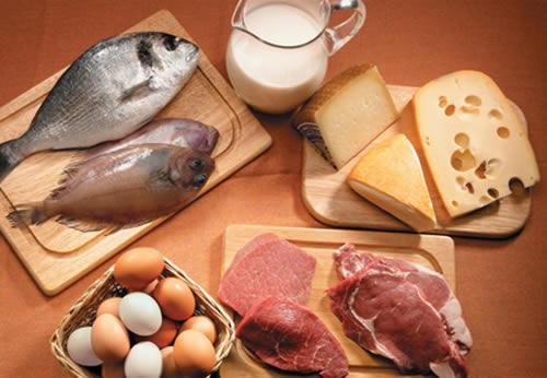 Proteínas y ejercicio físico I: Funciones y requerimientos