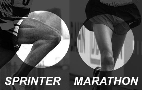 ¿Cómo averiguar las fibras musculares predominantes?