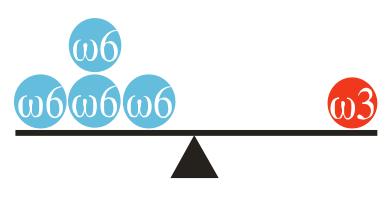 equilibrio omega 3 y omega 6