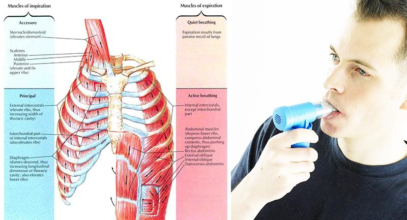 Ventajas del entrenamiento de los músculos respiratorios