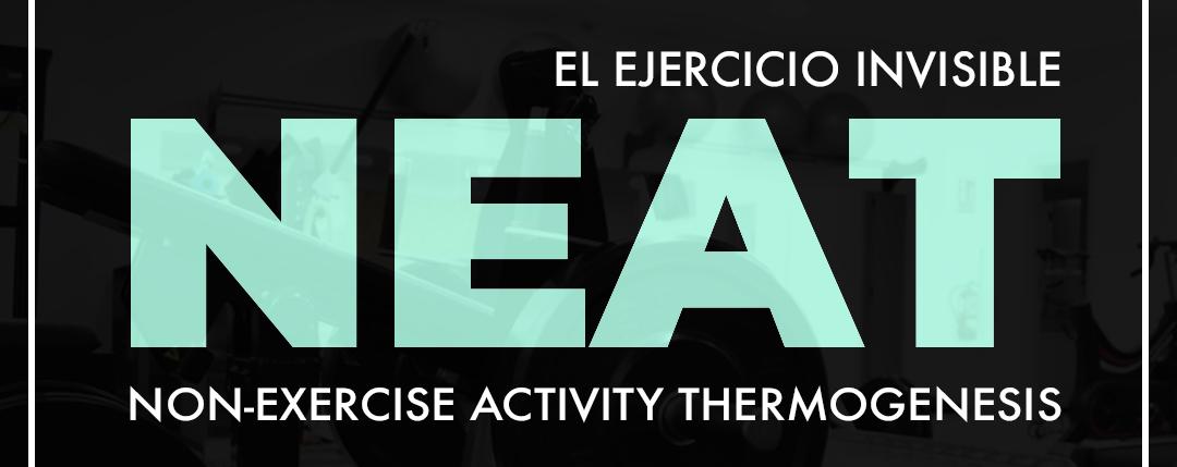 NEAT, el ejercicio invisible